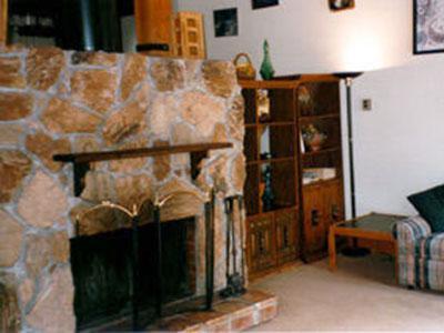 Charming 3 BR, 2 BA House in Lake Tahoe (032) - Image 1 - Lake Tahoe - rentals