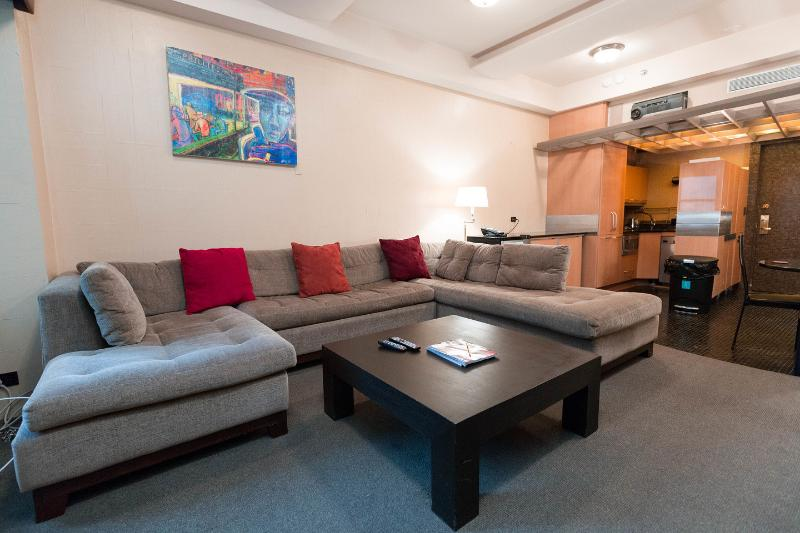 Living Room - 5 Star Central Park Luxury Suite (2015 Sale!) - New York City - rentals