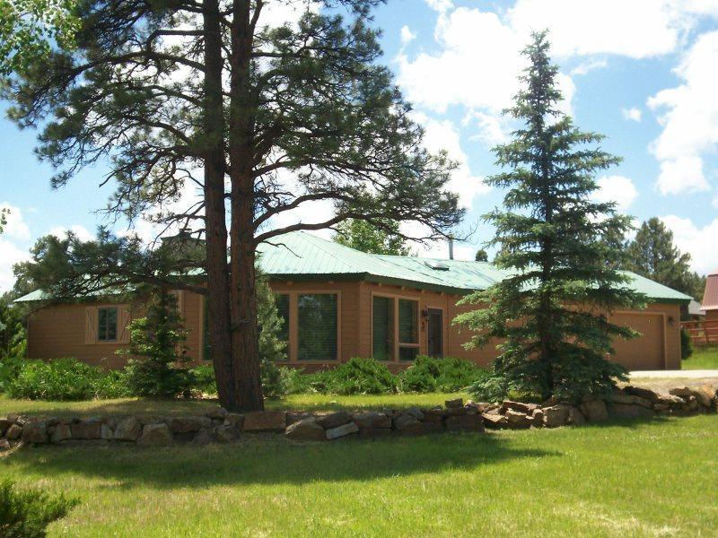 Emily Elizabeth - Image 1 - Pagosa Springs - rentals