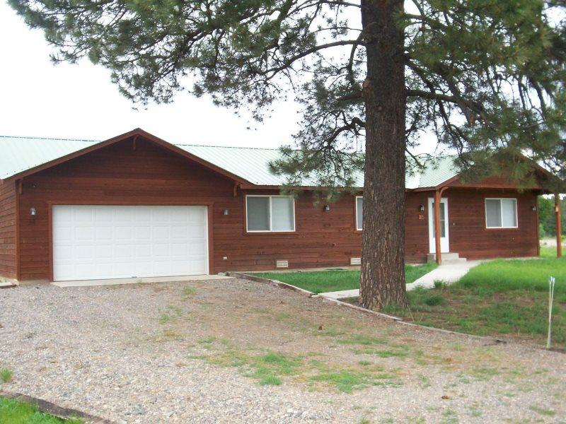 Street View Of the House - 36 Foothill - Pagosa Springs - rentals