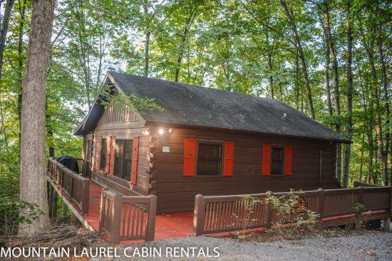 BULLWINKLE`S BUNGALOW- 2BR/1BA- COZY MOUNTAIN VIEW CABIN SLEEPS 5, SCREENED PORCH WITH PRIVATE HOT TUB, GAS GRILL, WIFI, FLAT SCREEN TV, AND PET FRIENDLY! ONLY $99 A NIGHT! - Image 1 - Blue Ridge - rentals