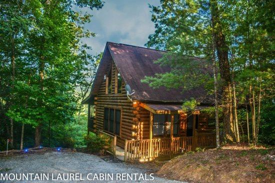 3 BEARS LODGE- 2BR/1.5BA, SLEEPS 4, BEAUTIFUL MOUNTAIN VIEW, GAS LOG FIREPLACE, HOT TUB ON SCREENED PORCH, GAS GRILL, AND A FOOSBALL TABLE! ONLY $99 A NIGHT! - Image 1 - Blue Ridge - rentals