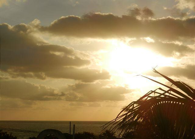 LBV - SPACIOUS SUITE, ROOF TOP OCEAN VIEWS, YOGA, TRANQUIL, TROPICAL & PRIVATE. - Puerto Morelos - rentals