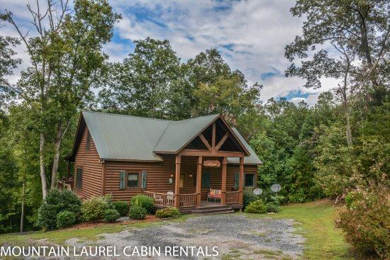 RUNABOUT TROUT LODGE-3BR/2.5BA CABIN ON THE TOCCOA RIVER,SLEEPS 12, EXCELLENT FISHING, WIFI, INDOOR/OUTDOOR WOOD BURNING FIREPLACES, HOT TUB, JETTED TUB, POOL TABLE, AIR HOCKEY, PAVILION WITH CHARCOAL GRILL AND PICNIC TABLE, PET FRIENDLY $210/NIGHT! - Image 1 - Blue Ridge - rentals