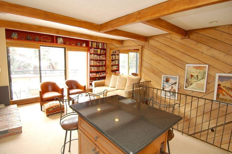 living_area_3a.jpg - AspTwnEast 3 - Aspen - rentals