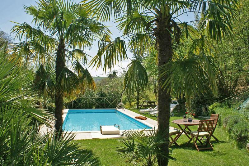 Private Villa, pool,wi-fi, pets allowed, Macerata - Image 1 - Sant'Angelo In Pontano - rentals