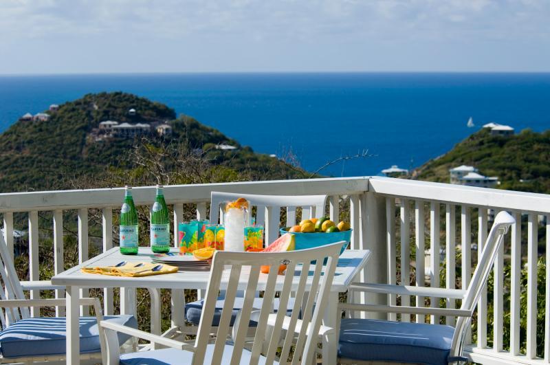 Great and affordable ocean views at Villa Catalina - Image 1 - Saint John - rentals