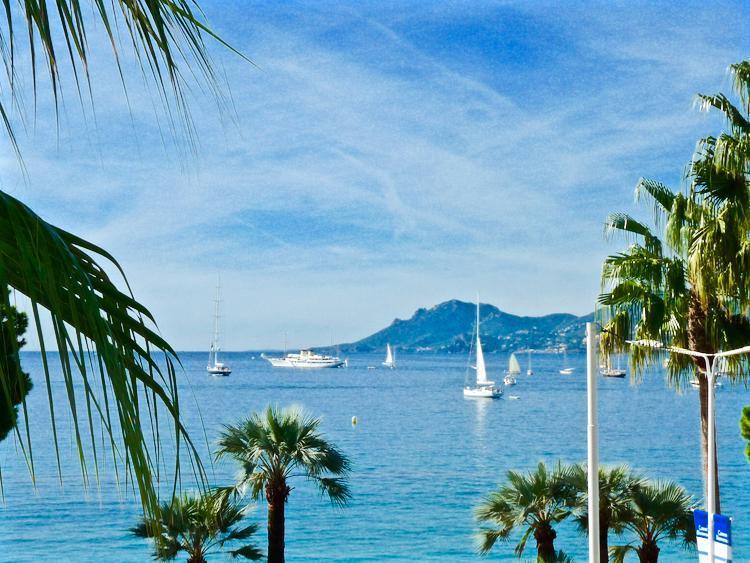 Miramar Delux - Image 1 - Cannes - rentals