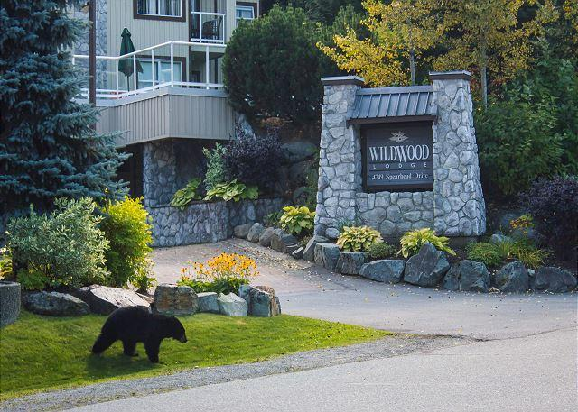 Beautifuly upgraded end unit, big hot tub in Wildwood,free parking/internet - Image 1 - Whistler - rentals