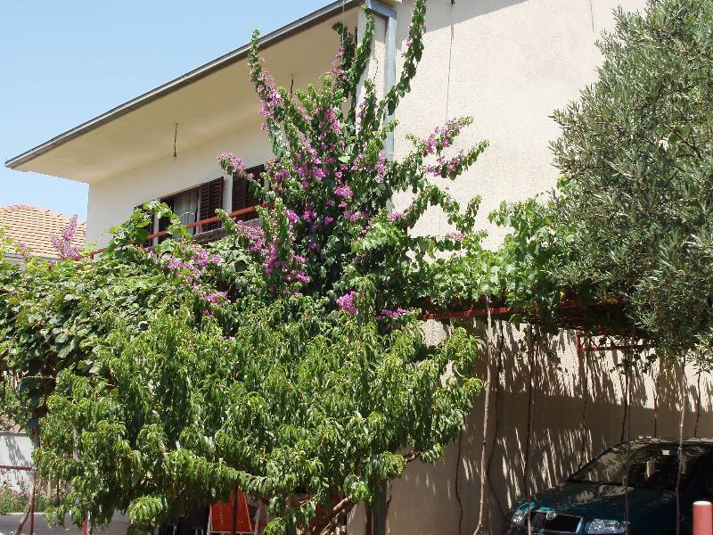 house - 5469 H(6+3) - Poljica (Marina) - Marina - rentals