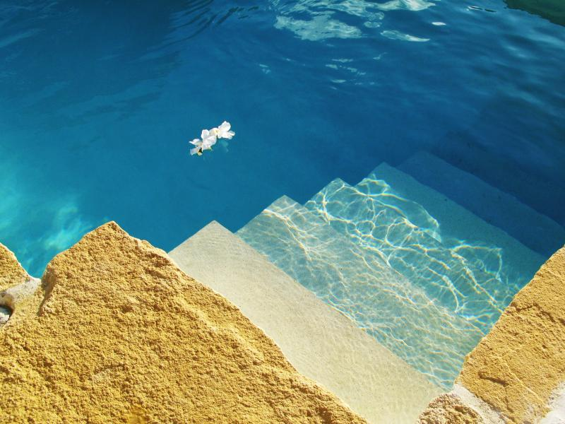 Stone Edged Swimming Pool - Bluewater Villa - Ocean View with Swimming Pool - Carriacou - rentals