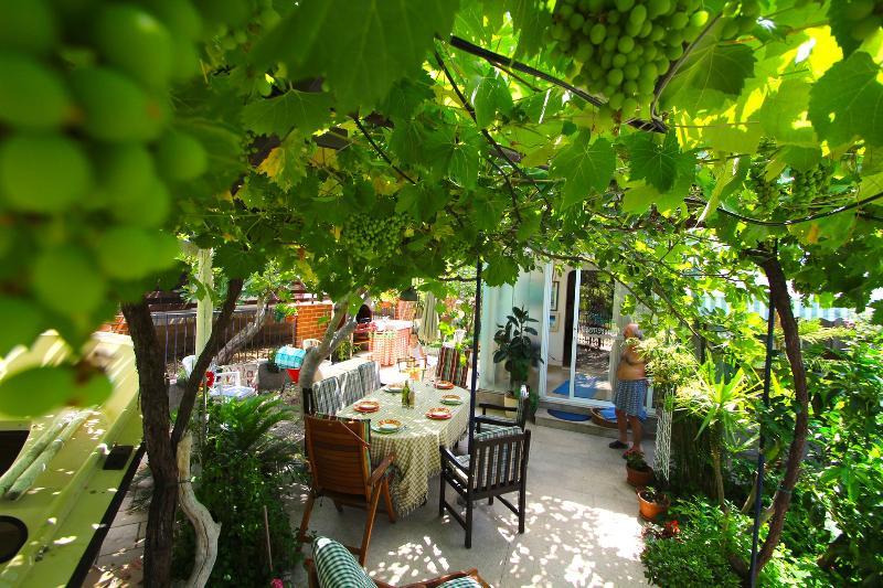 H(5+2): garden terrace - 6032 H(5+2) - Sucuraj - Sucuraj - rentals