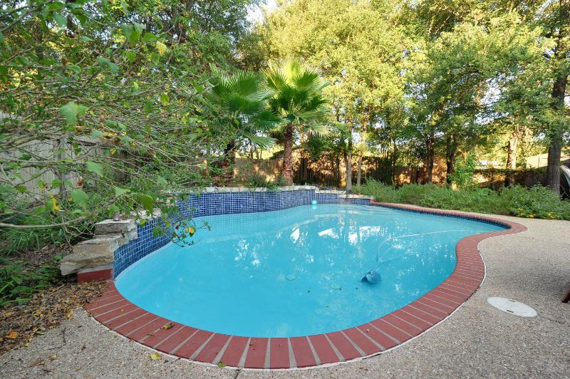 Backyard apartment - Image 1 - Austin - rentals