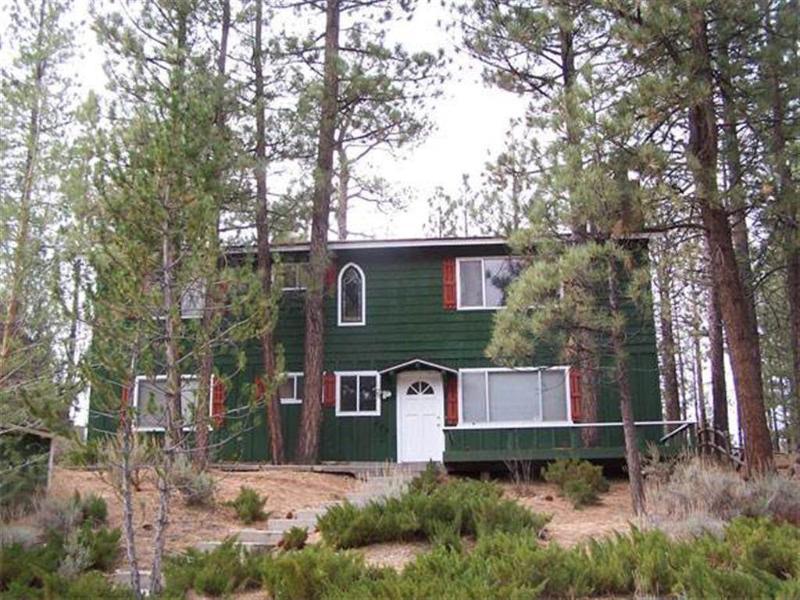 Forest Walk Cabin - Image 1 - Big Bear City - rentals