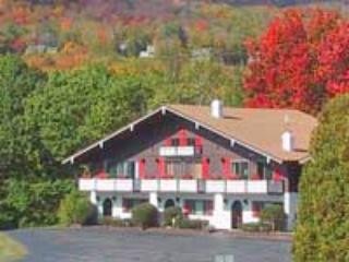 Linderhof Vacation Rentals - Image 1 - Glen - rentals
