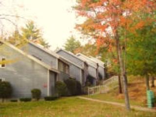 North Conway Condo Vacation Rental - Image 1 - North Conway - rentals