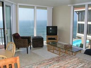 1 Bedroom, 1 Bathroom Vacation Rental in Solana Beach - (DMST25) - Solana Beach vacation rentals