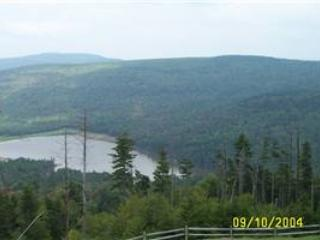 Mountain Lodge #341 - Snowshoe vacation rentals