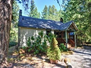 Pine River Cabin is a cozy, riverfront cabin, fireplace, hot tub. Dogs ok. - Brightwood vacation rentals