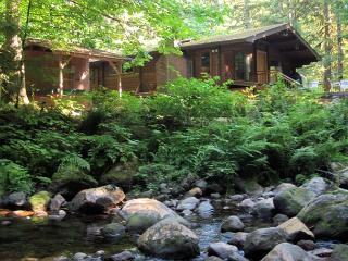 Moondance Cabin on Clear Creek, fireplace, secluded, decks, new hot tub. - Mount Hood vacation rentals