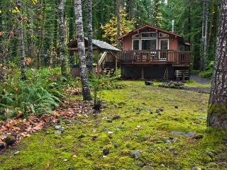 Riverwood Hideaway-Secluded romantic getaway, riverfront, hot tub. Dogs ok. - Brightwood vacation rentals