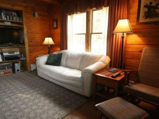 Brookdale Cabin - Stowe Area vacation rentals