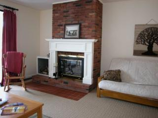 Notchbrook 13AB - Stowe Area vacation rentals