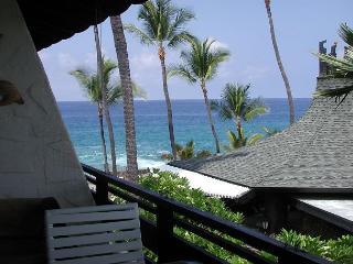Casa de Emdeko 314 -AC Included! - Kailua-Kona vacation rentals