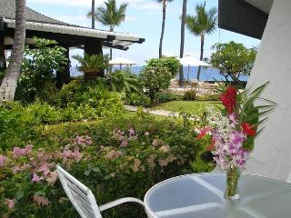 Casa de Emdeko  133 - AC Included! - Kailua-Kona vacation rentals