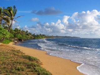 Waipouli #D-309: 2bdr/3bath city view condo with amenities - Kapaa vacation rentals