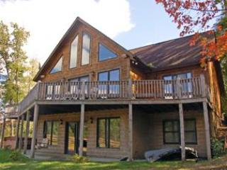 Four Seasons Paradise - Image 1 - McHenry - rentals