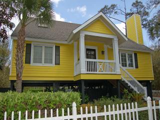 3 Road Runner - Sea Pines vacation rentals