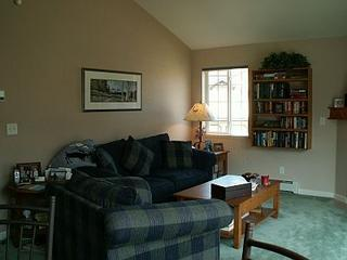 Quail Run #804 - 2 BR Condo - Image 1 - Steamboat Springs - rentals