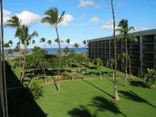 Maui Sunset 401B - Kula vacation rentals