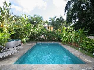 Pool, Jacuzzi, Endless Beaches Nearby, Walking distance to Waikiki - Honolulu vacation rentals