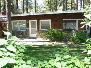 Great beach cabin - cute and cozy - Echo Lake vacation rentals