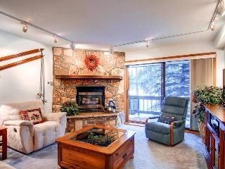 Atrium 103 - Shuttle to Lifts/Walk to Town - Alma vacation rentals