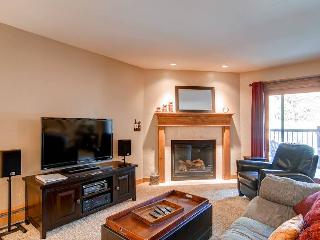 Park Place 102B - Walk to Lifts/Walk to Town - Breckenridge vacation rentals