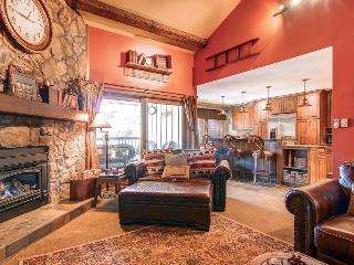 Park Place 304B - Walk to Lifts/Walk to Town - Summit County Colorado vacation rentals