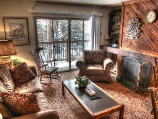 Powder Ridge 108 - Shuttle to Lifts/Walk to Town - Breckenridge vacation rentals