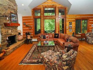 Buckhorn Lodge #6 - Beaver Creek vacation rentals