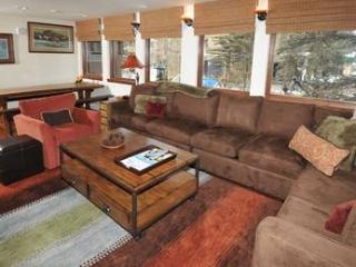 Lionshead Center #201 - Minturn vacation rentals