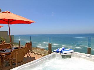 Single family 8br, 6.5ba home on the ocean, private spa, fireplace, patio - Encinitas vacation rentals