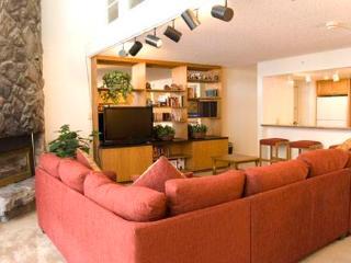 Evergreen 604, 2BD, 3BA condo - Vail vacation rentals