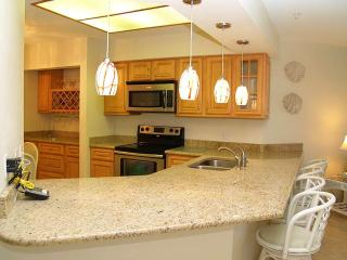 #203 at Crimson Condos - Madeira Beach vacation rentals