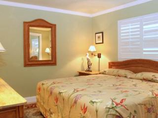 #115 at Surf Song Resort - Madeira Beach vacation rentals