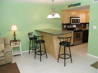 #230 at Surf Song Resort - Madeira Beach vacation rentals