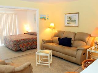 #335 at Surf Song Resort - Madeira Beach vacation rentals