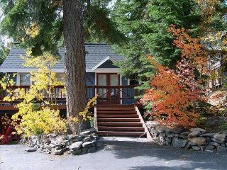 201 Cozy Hot Tub Cabin - Tahoe City vacation rentals