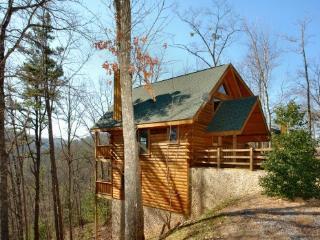 Wild Willow - Sevierville vacation rentals